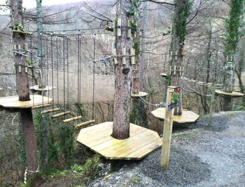 Construcción de circuitos de aventura en árboles en Igantzi (Navarra)