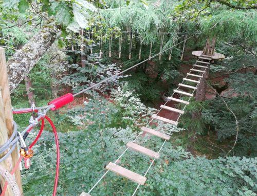 Inspección de parque de aventura en árboles en Vizcaya